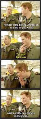 royal family burn royals humor and funny things