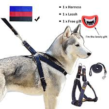 guide dog harness pet supplies whippy durable dog leash harness for dogs heavy