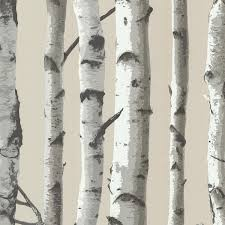 birch wood halloween background brewster 2532 20418 irvin birch tree wallpaper grey amazon com
