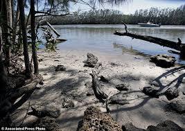 lagoon passes black friday florida u0027s building boom threatens wildlife rich lagoon daily