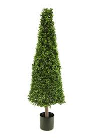 decorative trees buxus cone tree in white pot 137cm
