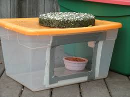 the best cats feeding outdoor cats in the winter food stations