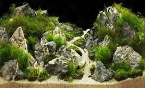 Aquascaping Rocks 5 Kg Grey Mountain Rock Stone Aquarium Iwagumi Style Set Of Stones
