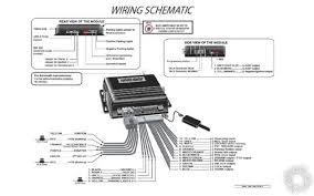 bulldog remote starter wiring diagram bulldog wiring diagrams