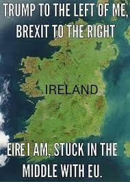Ireland Memes - 1587 best out of ireland have we come images on pinterest ireland