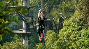Treetop Canopy Tours by Angkor Zipline Eco Adventure Canopy Tour Angkor Zipline