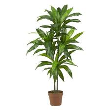 silk plants dracaena real touch silk plant free shipping today overstock