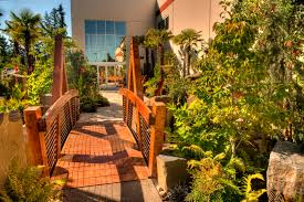 low maintenance plants for your commercial landscape gro outdoor
