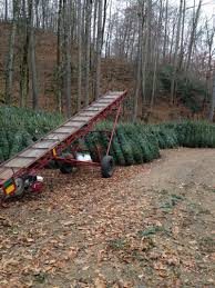 christmas tree farm in north carolina christmas trees for sale