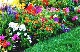 flower bed designs for front of house 2015 inspiration home design