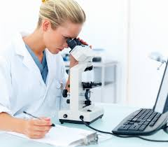 compound light microscope facts overview of the modern compound light microscope anytime airport