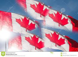 backlit canadian flag flags stock photo image 41814214
