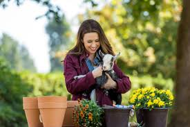preview all of my inn hallmark channel