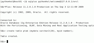 Create Table Oracle Sql Using Python With Oracle Database 11g