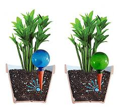 self watering plants plantpal pack of 2 large self watering globes plant watering
