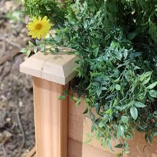 gronomics cedar rustic planter box walmart com