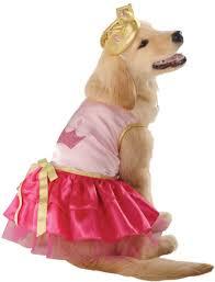 the cutest halloween pet costumes ever like ever fabfitfun