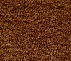 How To Clean Laminate Wood Floors Swiffer How To Clean Dog Urine From Hardwood Floors 4 Gallery Image And