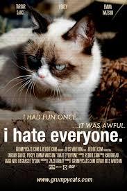 Grumpy Cat Meme I Had Fun Once - 333 best grumpy cat lilbub pokey 3 3 3 images on pinterest