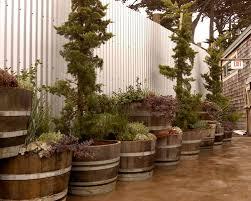 whiskey barrel planter houzz