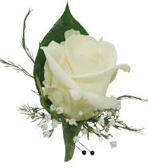 boutonniere flower white boutonniere cbbcla02 flower patch