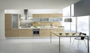 Cheap White Kitchen Cabinets by Kitchen Cabinet Caress Kitchen Cabinets For Cheap Cheap