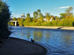 a backyard river for the front range angler the south platte