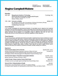 Mvc Resume Sample by How Professional Database Developer Resume Must Be Written