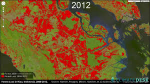 Interactive Map Global Forest Watch by Mapping Deforestation With Google Earth Youtube