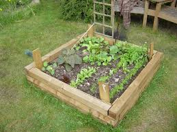 raised bed salad hackney permaculture