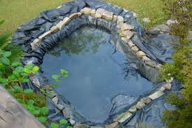 How To Make A Koi Pond In Your Backyard Choosing The Right Liner For Your Pond Pvc Rubber Or Mud Nualgi