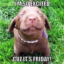 Finally Friday Meme - 55 crazy friday memes