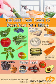 the best fresh foods to boost your pet u0027s kibble i love pets