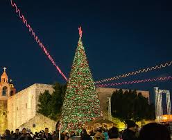 10 amazing christmas trees from around the world