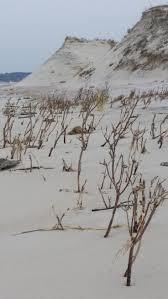 cranes beach ipswich ma photo credit valerie giarraputo mcstine