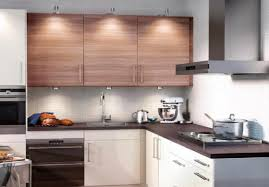 Best Kitchen Cabinet Deals Cabinet Buy Cabinets Online Phenomenal Buy Glass Cabinets Online
