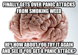 Panic Attack Meme - finally gets over panic attacks from smoking weed hey how about