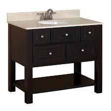 24 Inch Bathroom Vanity With Sink by Shop Allen Roth Hagen Espresso Undermount Single Sink Birch