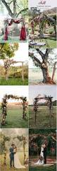 Wedding Ceremony Arch Best 25 Wedding Ceremony Arch Ideas On Pinterest Wedding Altars