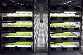 hydroponic robot farming goes live garden culture magazine