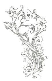 drawn cherry blossom coloring page pencil and in color drawn