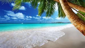 the pros and cons of the beach beach beach wallpaper and goa the pros and cons of the beach