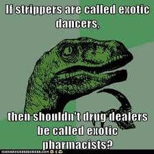 Strippers Meme - animal memes philosoraptor what other exotic professions are