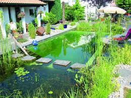 Backyard Swimming Ponds by 166 Best Swim Pond Images On Pinterest Natural Pools Natural