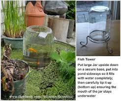Building A Fish Pond In Your Backyard by 139 Best Ponds Images On Pinterest Backyard Ponds Koi Ponds And