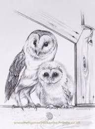 snowy owl drawing by khaliaart deviantart com on deviantart art