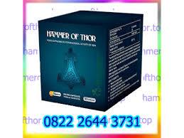 agen obat hammer of thor di malang 082226443731 jual obat kuat