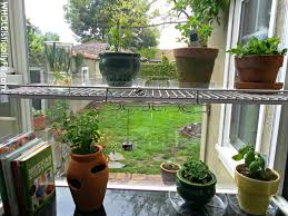 pot indoor vegetable garden 5 tips for cultivating an indoor