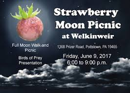 what is a strawberry moon strawberry moon picnic green valleys watershed association