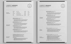 pages resume template the best cv resume templates 50 exles design shack